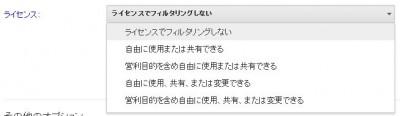 google_license.jpg