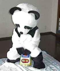 direct_2008_12_10_panda7.jpg