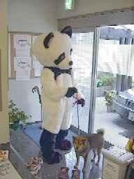 direct_2008_12_10_panda3.jpg